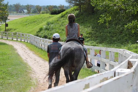 蒜山ジャージーランドの乗馬